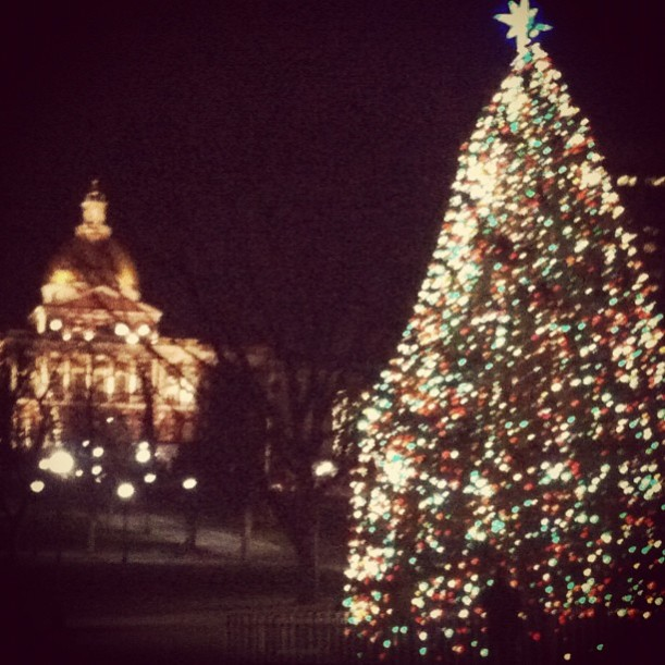 Boston Common Christmas